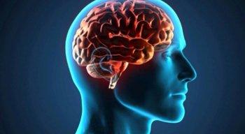 Câncer de cérebro é o tema do Consultório