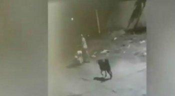 Caso aconteceu na cidade de Paulista, no Grande Recife
