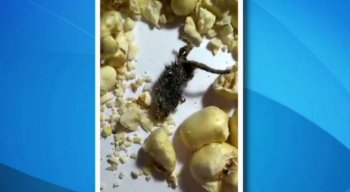 O rato foi encontrado em um pacote de pipoca