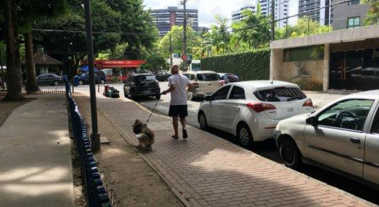 Prefeitura do Recife multará quem deixar de recolher cocô do cachorro