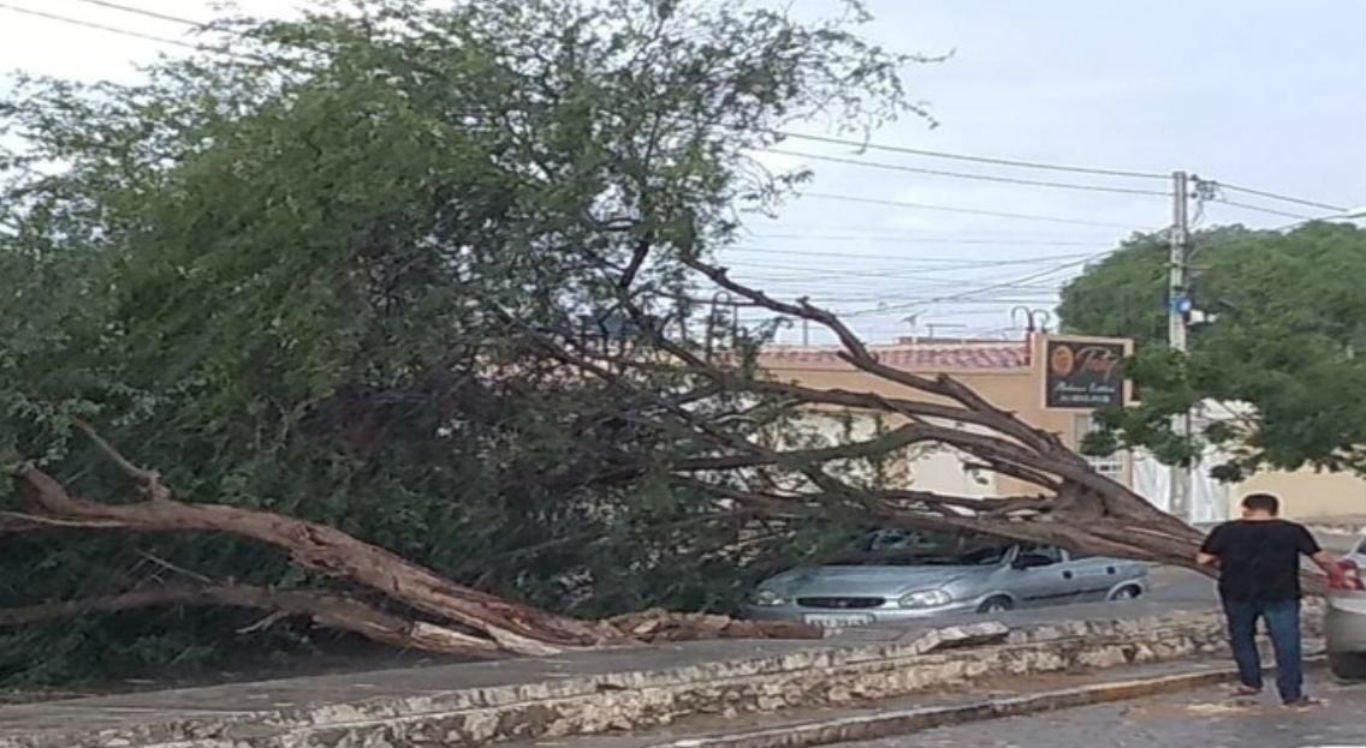 Ventania causa destruição e deixa bairros de Petrolina sem luz
