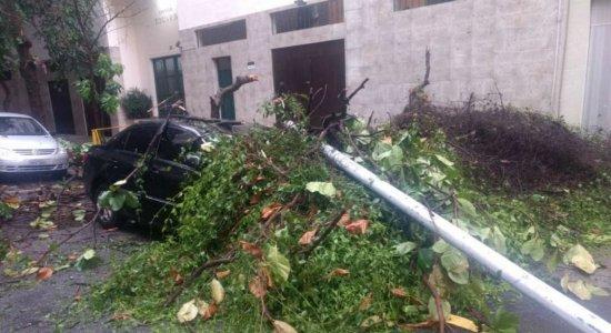 Temporal causa danos no Rio e deixa a cidade em estágio de crise