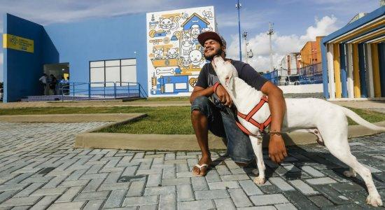 Saiba como fazer a inscrição para castrar cães e gatos gratuitamente no Recife