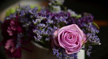 Flores são presentes populares no Dia das Mães