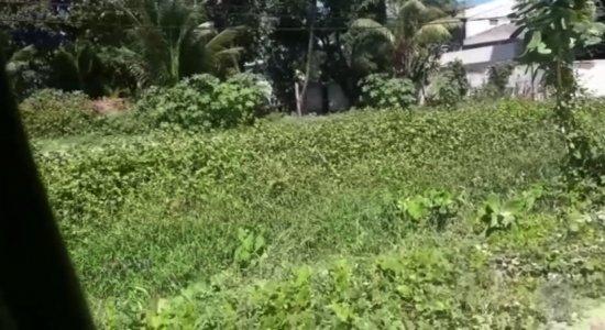 Vídeo: moradores denunciam sujeira em canal do Janga, no Paulista