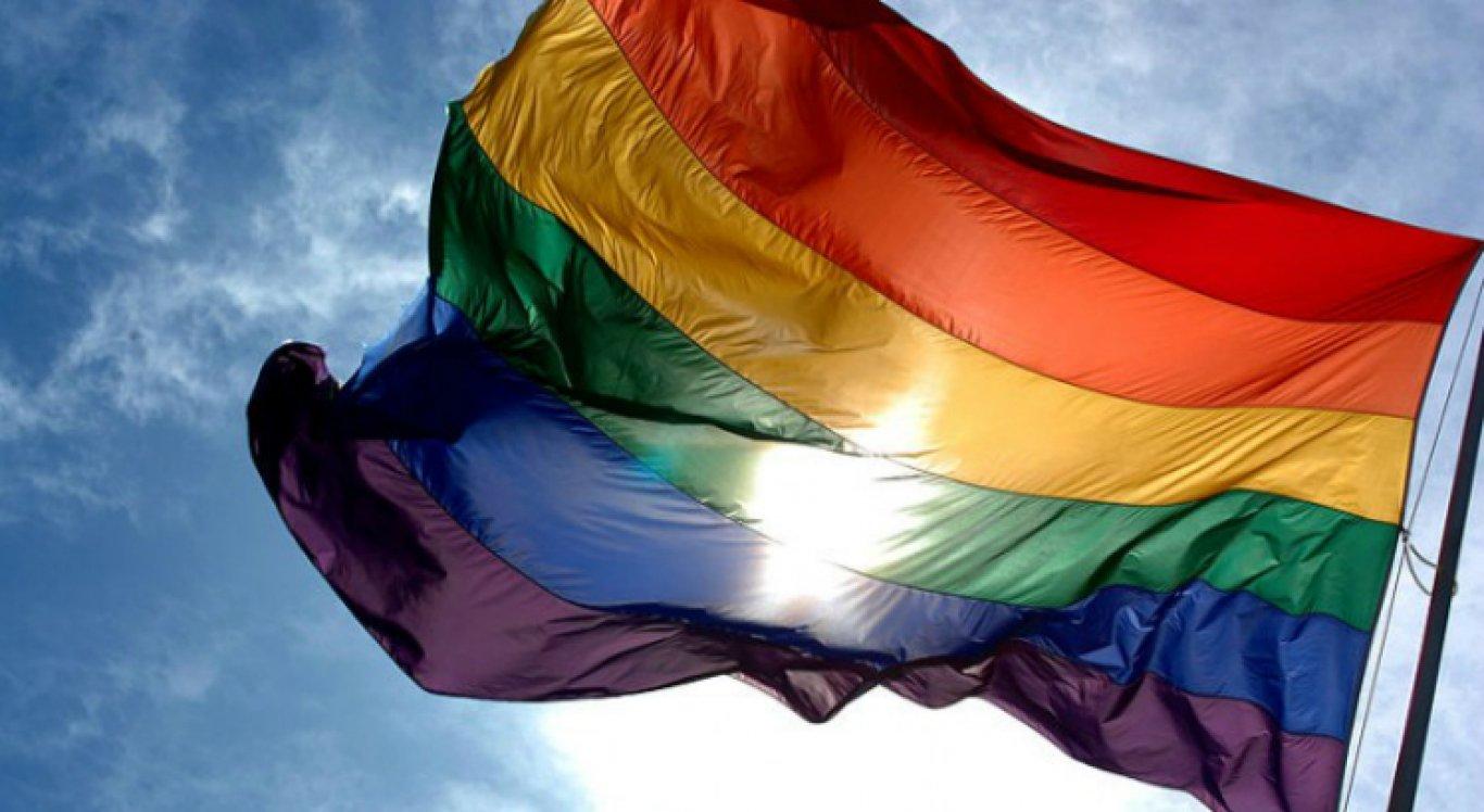 """""""Estamos lutando pela nossa existência e por nosso amor"""", declarou a presidente do Conselho Nacional de Combate à Discriminação e Promoção dos Direitos de Lésbicas, Gays, Bissexuais, Travestis e Transexuais (CNCD/LGBT)"""