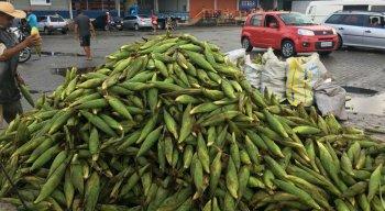 Começa a venda de milho no Ceasa para o São João; confira os preços
