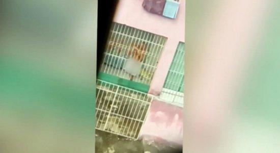 Homem é filmado se masturbando no terraço de casa em Abreu e Lima
