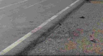 Segundo testemunhas, o garupa estava solto na moto no momento do acidente.