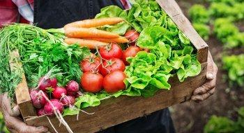Também é preciso ficar sempre atento à higiene dos alimentos, orgânicos ou não
