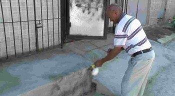Moradores alegam que crianças brincam de pegar carrapato na rua.
