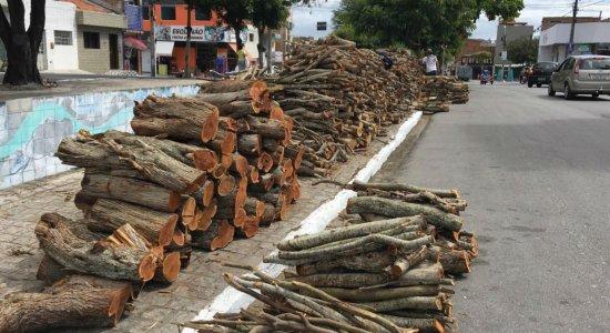 Entenda a origem da tradição de acender fogueira nos festejos juninos