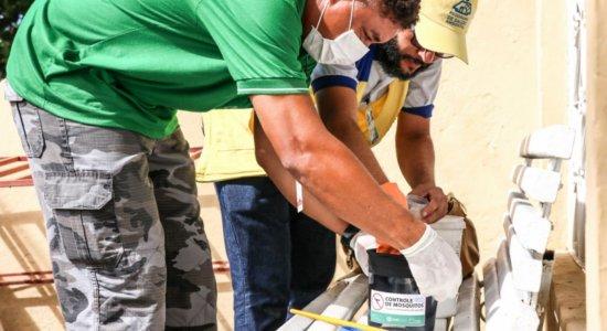 Prefeituras reforçam ações contra arboviroses após Compesa mudar calendário e aumentar falta d'água