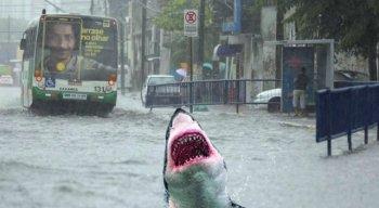 Chove na Região Metropolitana do Recife desde o domingo
