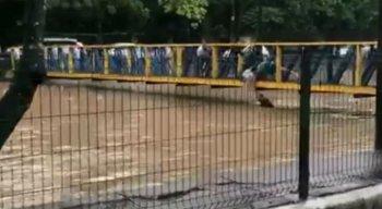 Homem caiu com o carro em um canal em Boa Viagem