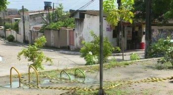 De acordo com os moradores, a égua recebeu uma descarga elétrica ao encostar no poste
