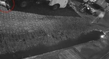 Homem foi filmado perseguindo o gato