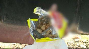 Homem encontrou um rato dentro de um pacote de pipoca