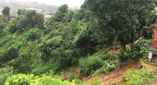Árvore cai em cima de casa e mata homem na Zona Norte do Recife