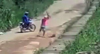 Câmera de segurança flagra cachorro sendo agredido na estrada