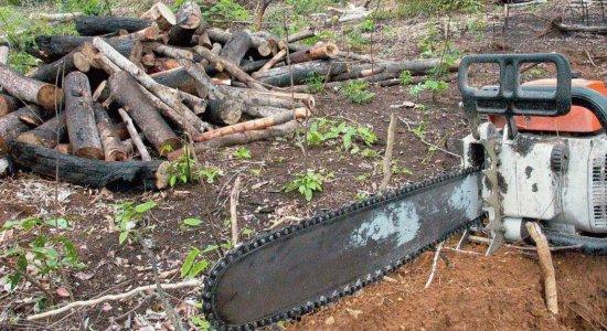 Ibama vai contratar empresa para monitorar desmatamento na Amazônia