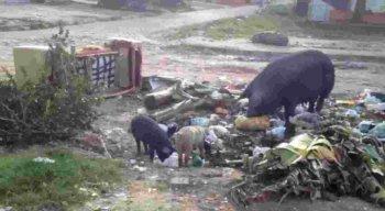De acordo com os moradores, há dias que não passa a coleta do lixo.