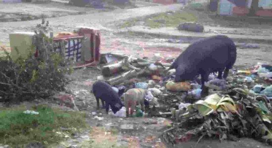 População de Paulista denuncia falta de coleta de lixo