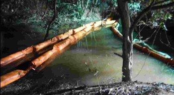 Os peritos vão produzir um laudo explicando e detalhando a extensão do dano causado à natureza