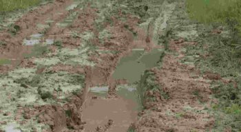 A Prefeitura de Agrestina disse que está aguardando a redução das chuvas para fazer a manutenção da via.