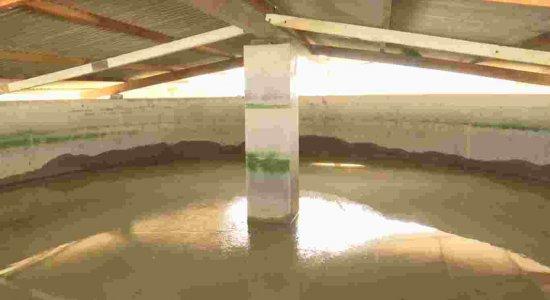 Moradores denunciam má distribuição de água em São Bento do Una, no agreste