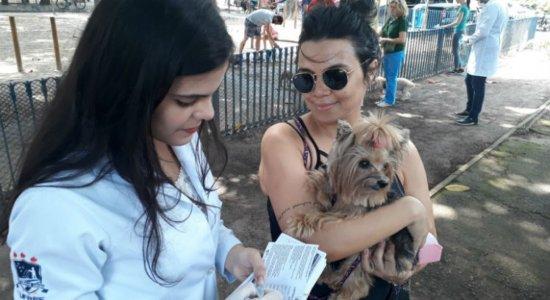 Campanha de vacinação contra raiva chega aos bairros de Apipucos e Macaxeira, neste sábado (21)