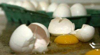 Produção de ovos de galinha foi recorde em 2018, atingindo 4,4 bilhões de dúzias, alta de 5,4% em comparação com 2017