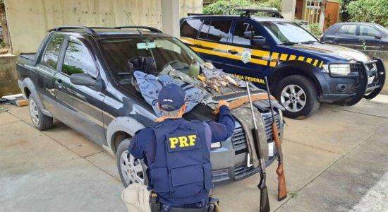 Homens são detidos com armas e aves silvestres abatidas em Garanhuns