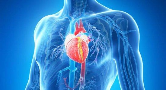 Mais de 289 mil pessoas morreram de doenças cardiovasculares em 2019