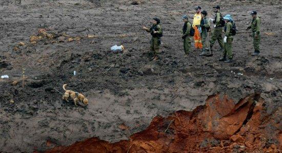 Após 8 meses de rompimento de barragem, corpo de vítima é encontrado