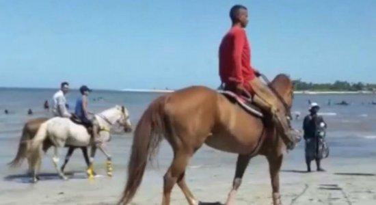 Cavalos ''desfilam'' entre banhistas na praia de Mangue Seco, em Igarassu