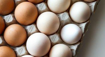 Segundo a Associação Avícola de Pernambuco, o ovo é o segundo alimento mais completo em termos nutricionais