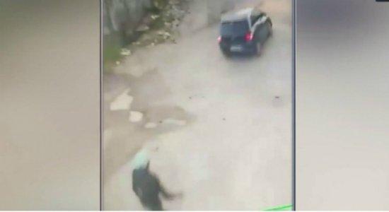 Vídeo mostra motorista atropelando cadela e indo embora em Jaboatão