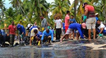 Devido aos risco de contaminação, veja quais os itens que devem ser usados para recolher o material das praias.
