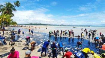 Força tarefa atua na retirada de óleo da Praia dos Carneiros, em Tamandaré