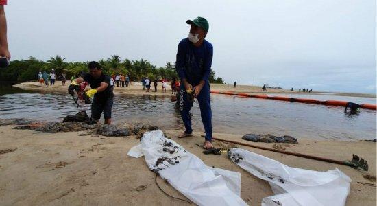 Voluntários retiram óleo do mar que atinge o litoral do Nordeste