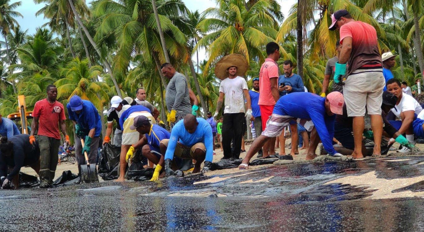 Voluntários trabalham para retirar óleo da Praia dos Carneiros, em Tamandaré