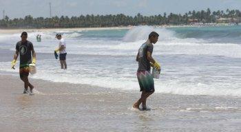 Pequenas manchas de óleo atingem a Praia de Maracaípe