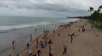 Voluntários entraram em ação pra tentar salvar mais uma praia pernambucana.