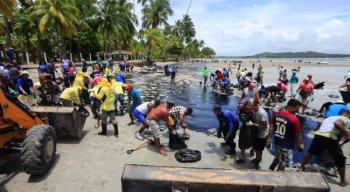 o óleo retirado das praias passa por tratamento para evitar mais poluição ao meio ambiente