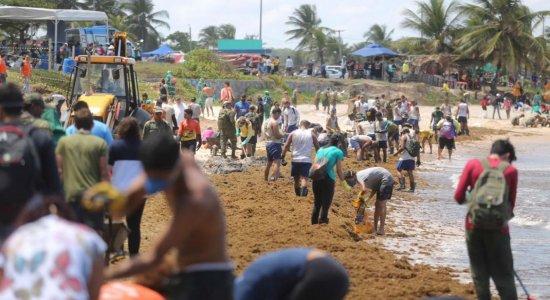 Voluntários limpam a praia de Itapuama, no Cabo de Santo Agostinho