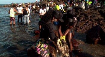 Os voluntários são responsáveis por grande parte da retirada das manchas de óleo das praias pernambucanas