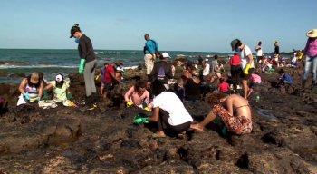 Após contato com o óleo das praias, mais de 700 pessoas alegaram ter sofrido de problemas respiratórios e alergias