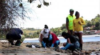 Voluntários trabalharam na remoção dos fragmentos de óleo