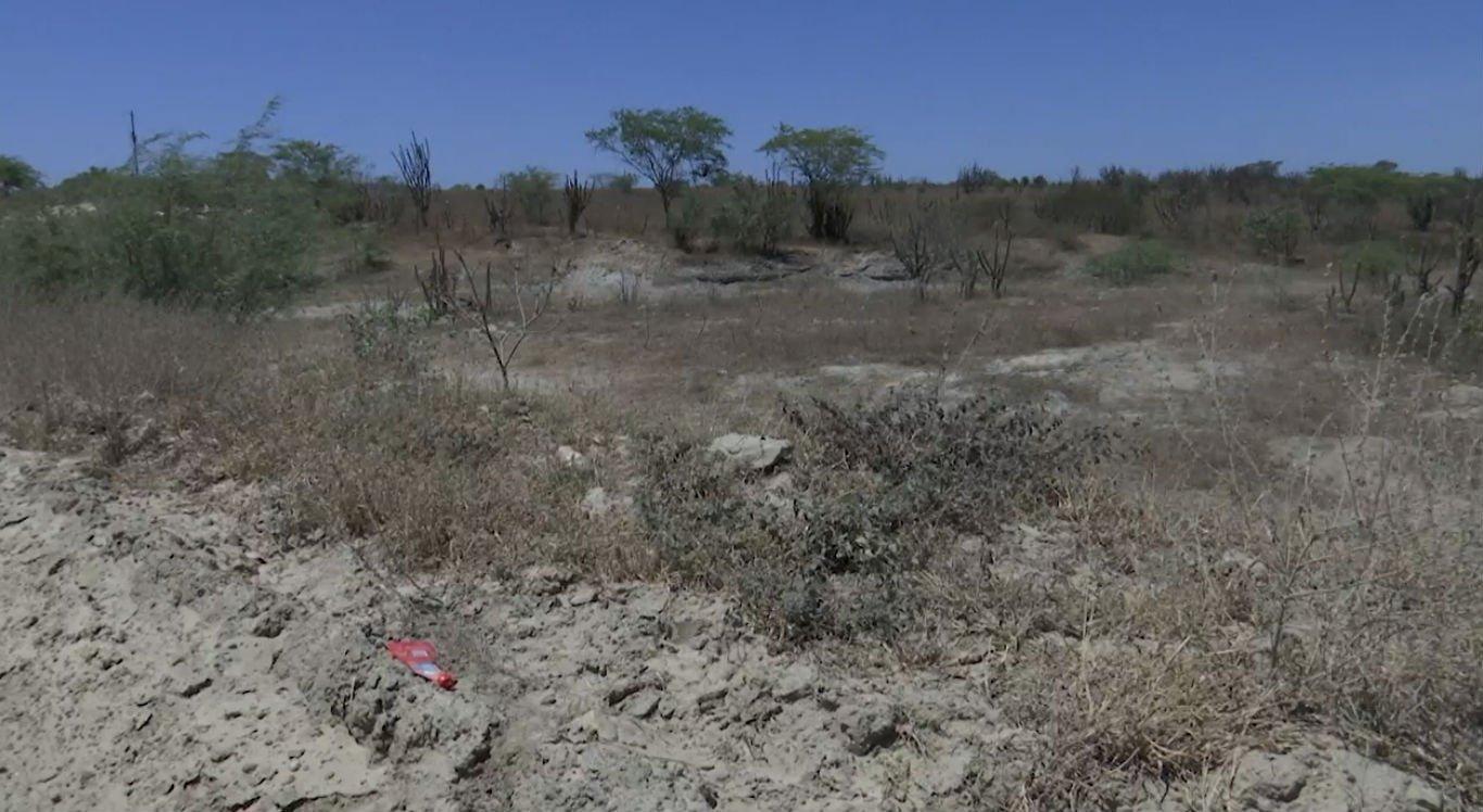 Cenário é de seca em Santa Maria do Cambucá, no Agreste